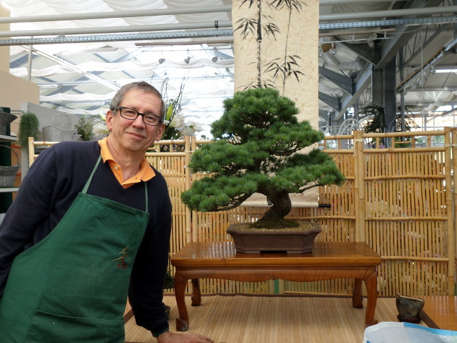 M. Barast bonsaï